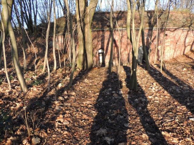 5_Dzialka_przy_ul._Polnej_w_Toruniu__fot._OR_Bydgoszcz.jpg